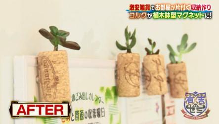 植木鉢マグネット