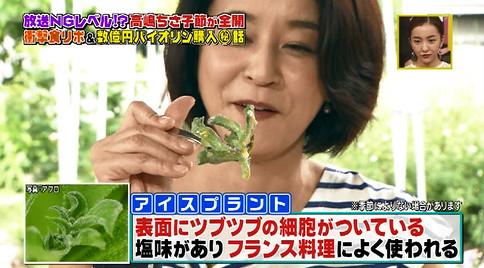 火曜サプライズ高嶋ちさ子アイスプラント