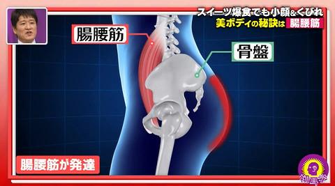 初耳学腸腰筋発達